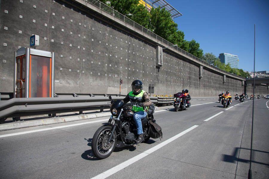 Treviso42